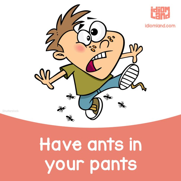Have ants in your pants. Meaning: To be very excited or worried about something.
