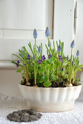 Jeanne d'Arc Livíng Blog: Spring Flowers, Easter Spring Finds, Jeanne D Arc, Glass Moulds, Containers Flowers Plants, Livíng Blog Springtime
