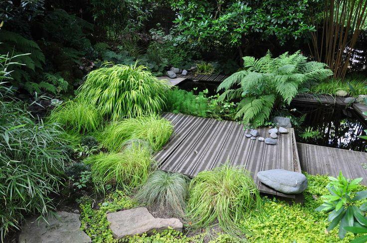 17 Meilleures Id Es Propos De Jardin Ombrag Sur Pinterest Plantes D 39 Ombre Ombre D