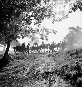 Przedwojenna fotografia litewska:   V. Augustinas