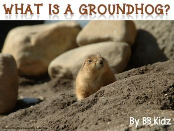 This is a booklet to illustrate groundhog facts.  Pages include what the groundhog looks like, what the groundhog eats and where the groundhog lives. Also, includes a few more writing prompt pages and 2 Color by number pages. A fun addition to a groundhog unit!By BB Kidz