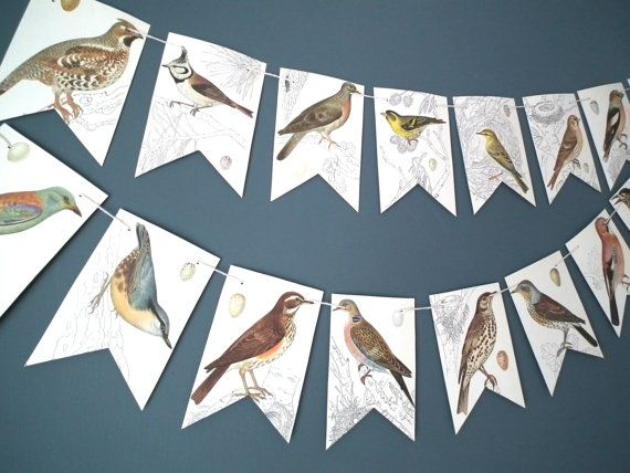 Hey, I found this really awesome Etsy listing at https://www.etsy.com/es/listing/181699910/bird-bunting-bird-banner-paper-garland