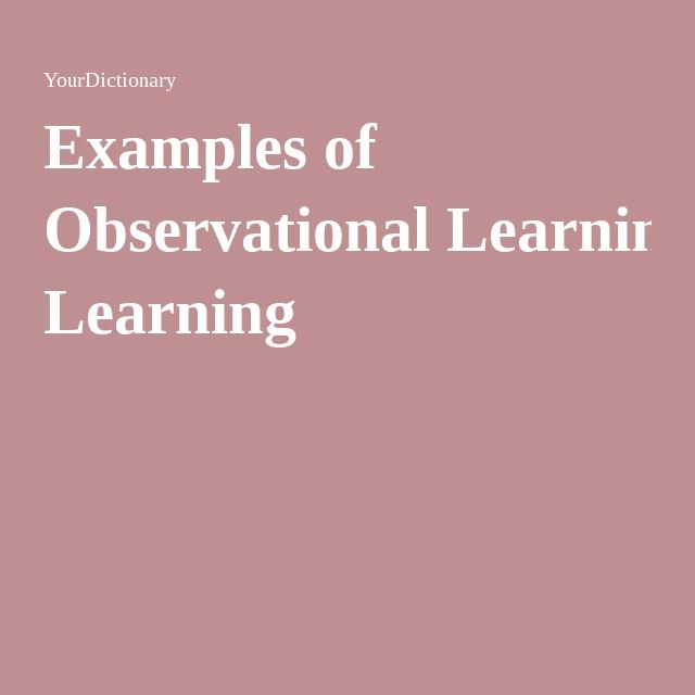 observational learning 2 essay Observational learning rect herds arose in the original herding papers since they assumed finite multino- the private observation of signal realization.