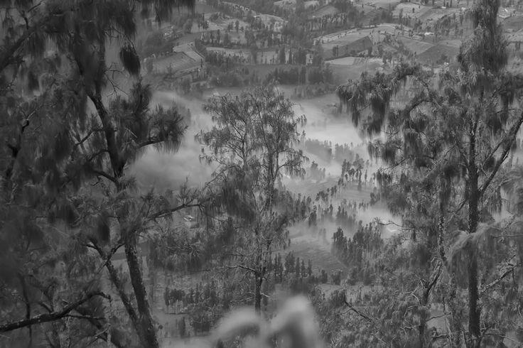 Misty morning by very daendels on 500px