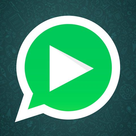 """Assista ou baixe Videos para Whatsapp, Áudios e Imagens engraçadas para compartilhar com seus amigos no Whatsapp e nas redes sociais. O link para baixar """"%%post_title%%"""" está logo abaixo. Boa diversão!"""