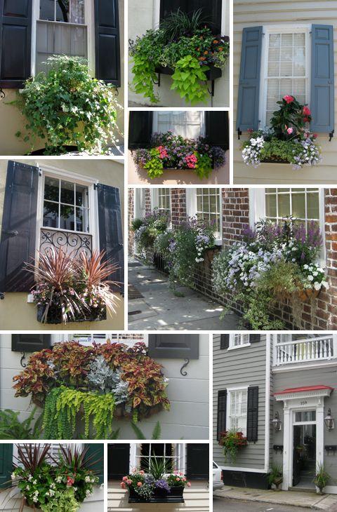 window boxes - Window Box Planters