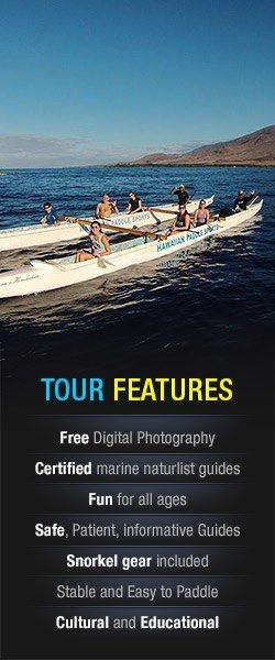 Be part of an ocean going tribe on our Hawaiian Outrigger Canoe tour. Talk story, experience the culture and take in the beauty during this tour. Go whale watching during your tour and snorkel from the canoe at some of our favorite spots.