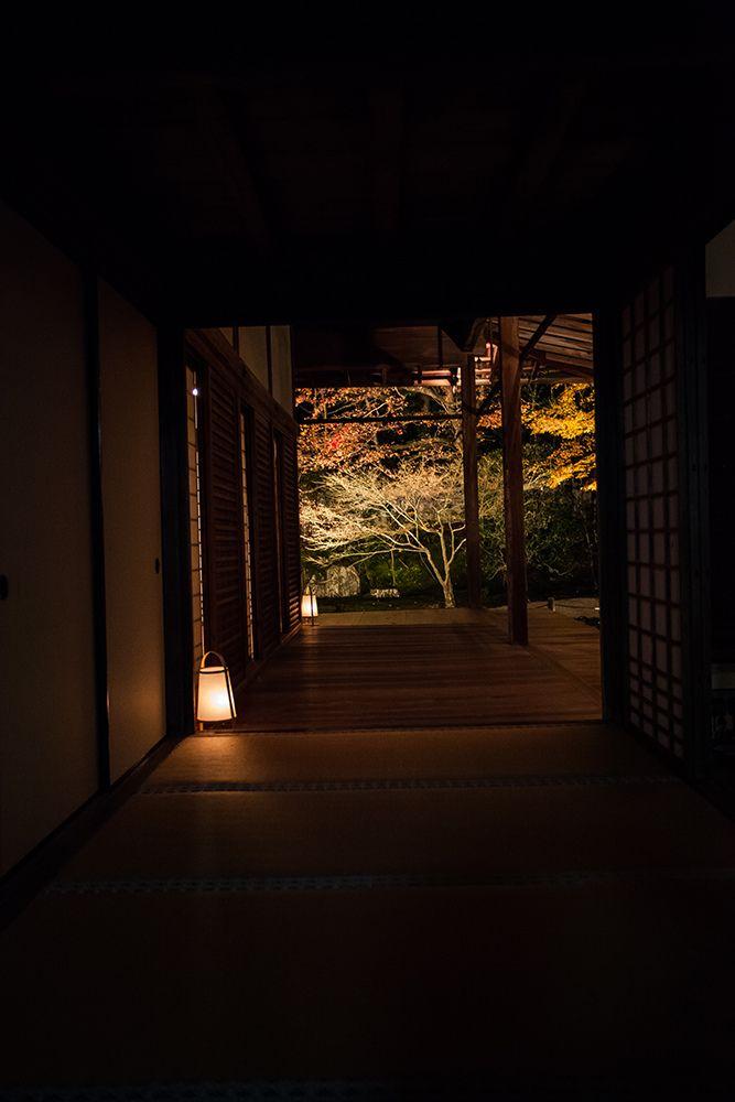 "京都・南禅寺 夜の天得院。 Night of ""Tentokuin"" in Nanzen-ji Temple of Kyoto japan."