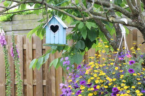 #selfmade #picture #in #the #garden #blue #birdhouse #heart #flowers #green #purple #yellow #three #love #like #follow #followme