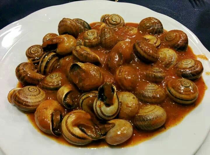 Snails from Turre, Almeria
