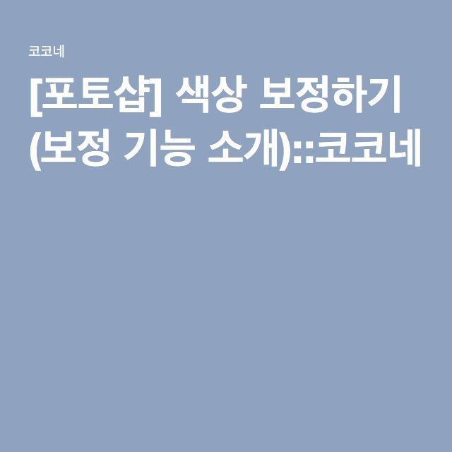 [포토샵] 색상 보정하기 (보정 기능 소개)::코코네