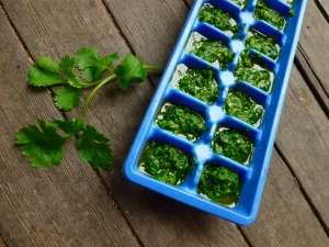 Freezing Cilantro ~ Wash it well ~ drain ~ chop ~ fill ice cube trays ~ cover with water and freeze ~ once frozen the cubes can be bagged and labeled for later use.  Taste carries well but not useful for garnish after frozen.