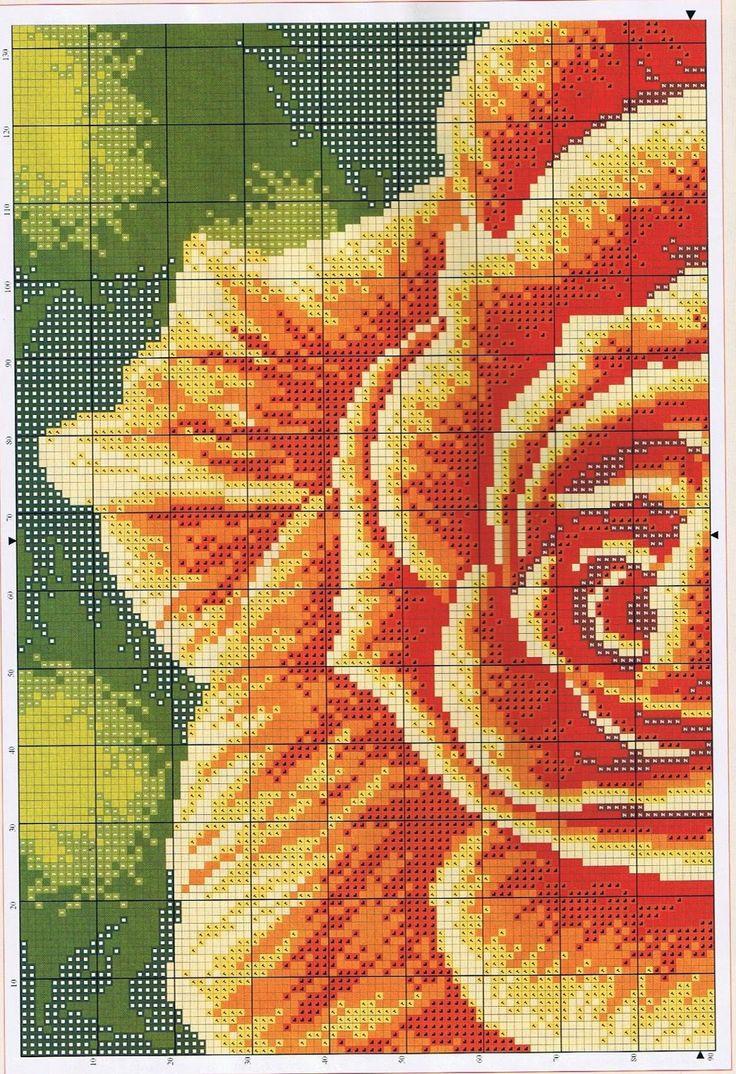 rosa-2.jpg (1096×1600)