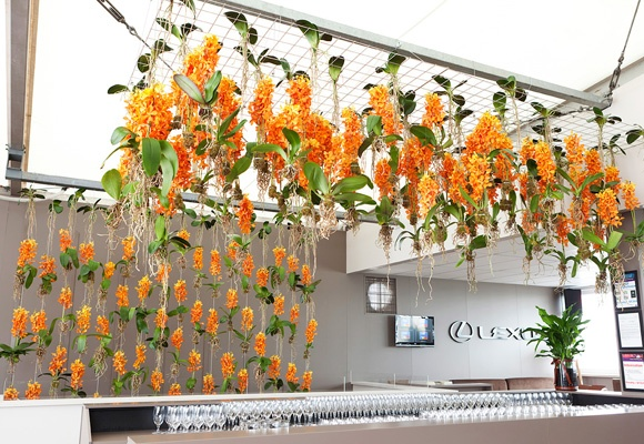 flowers vasette at lexus marquee melbourne cup 2011