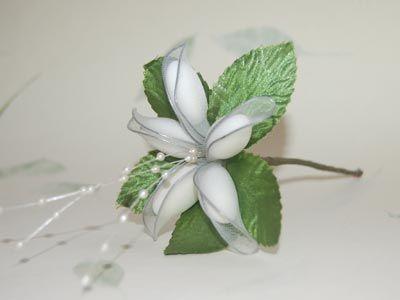Flores de Almendras (Fotos y Explicacion)