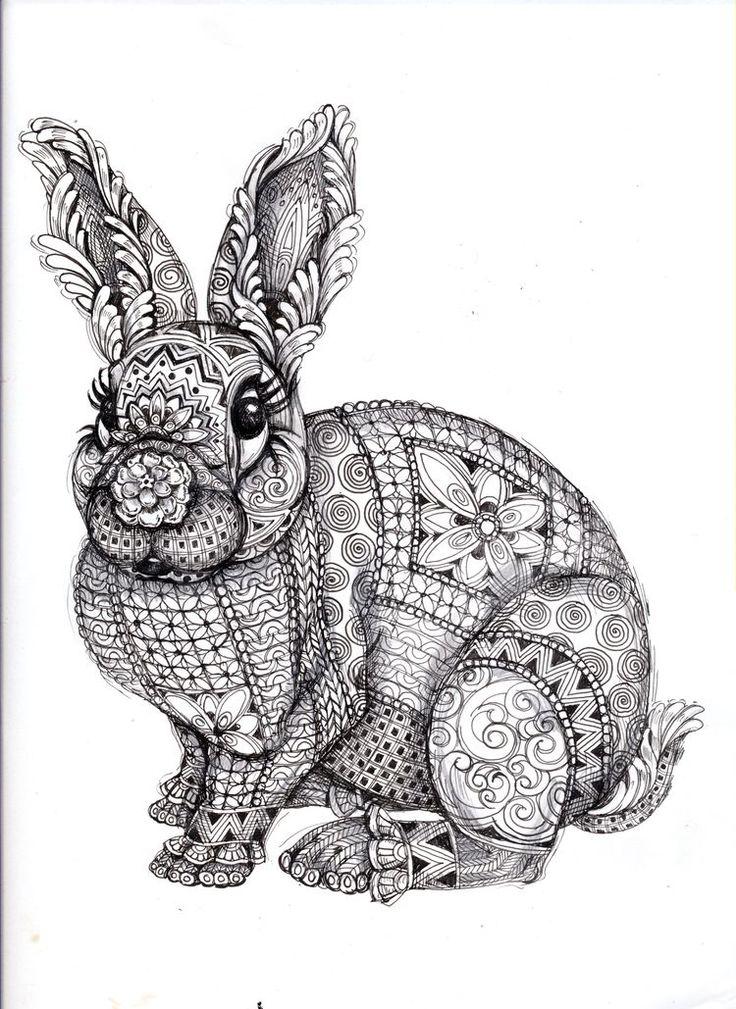 picture book hare colored - photo #41