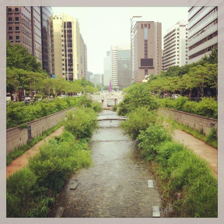 청계천 (Cheonggyecheon) in 서울특별시