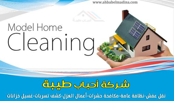 Cleaning Company Yanbu Ahbabelmadina Com Cleaning Companies Cleaning Clean House