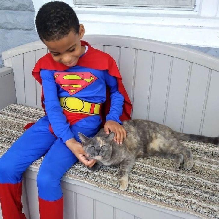 Con 5 años se disfraza para ayudar a los gatos callejeros. Cree que es un superhéroe para ellos