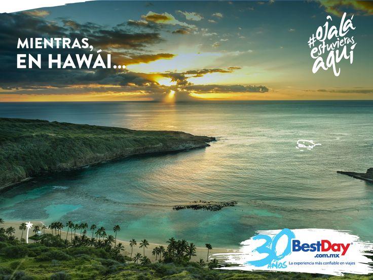 ¿Despertaste con ganas de estar en un Hotel? #OjalaEstuvierasAqui en #Hawai #EUA con #BestDay