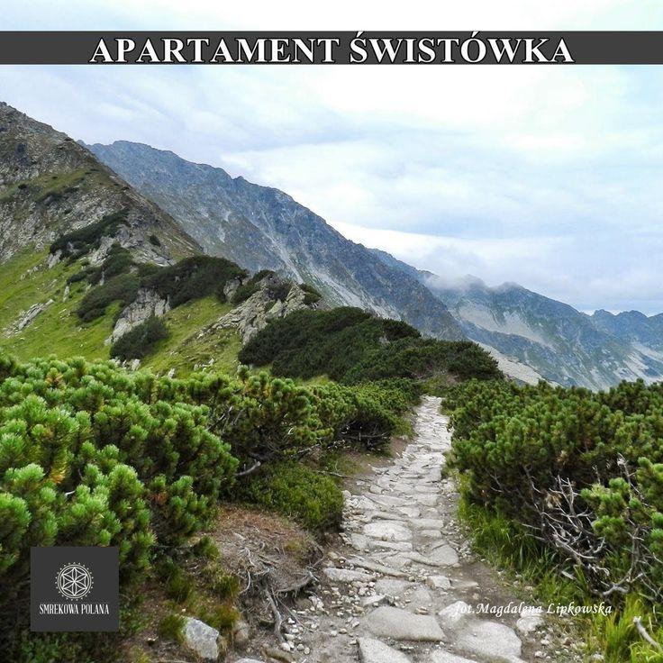 Apartament Świstówka - zapraszamy! #poland #polska #malopolska #zakopane #mountain #tatry #place #destination