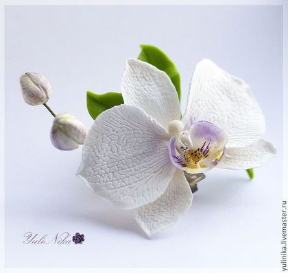 Заколки ручной работы. Ярмарка Мастеров - ручная работа. Купить Зажим с орхидеей фаленопсис. Handmade. Фаленопсис, Холодный фарфор