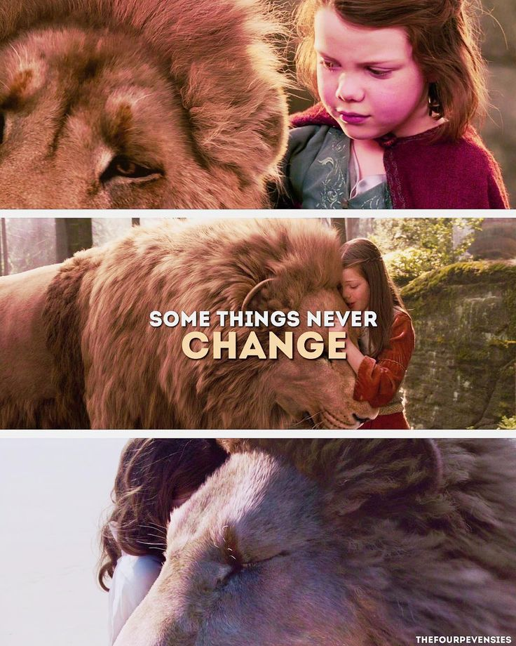 «Lucy and Aslan together is such an important concept!!!»