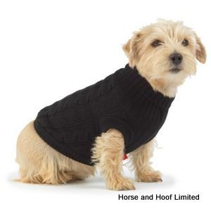 how to put a dog coat on a dog