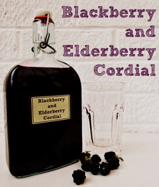 I love blackberries. When I was a small person, my birthday treat was a bowl of stewed blackberries topped with a generous dollop of double cream. Considering my birthday is at the end of March, my…
