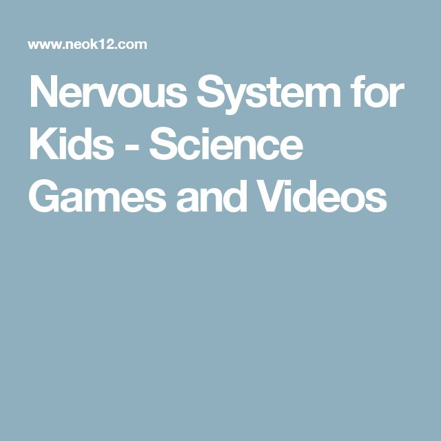 Nervous System for Kids - Science Games and Videos