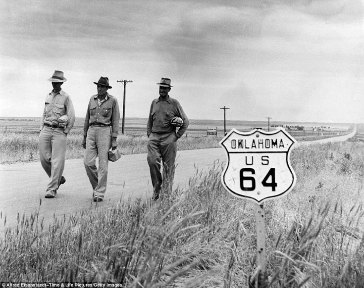 183 best Dust bowl images on Pinterest  Dust bowl Great