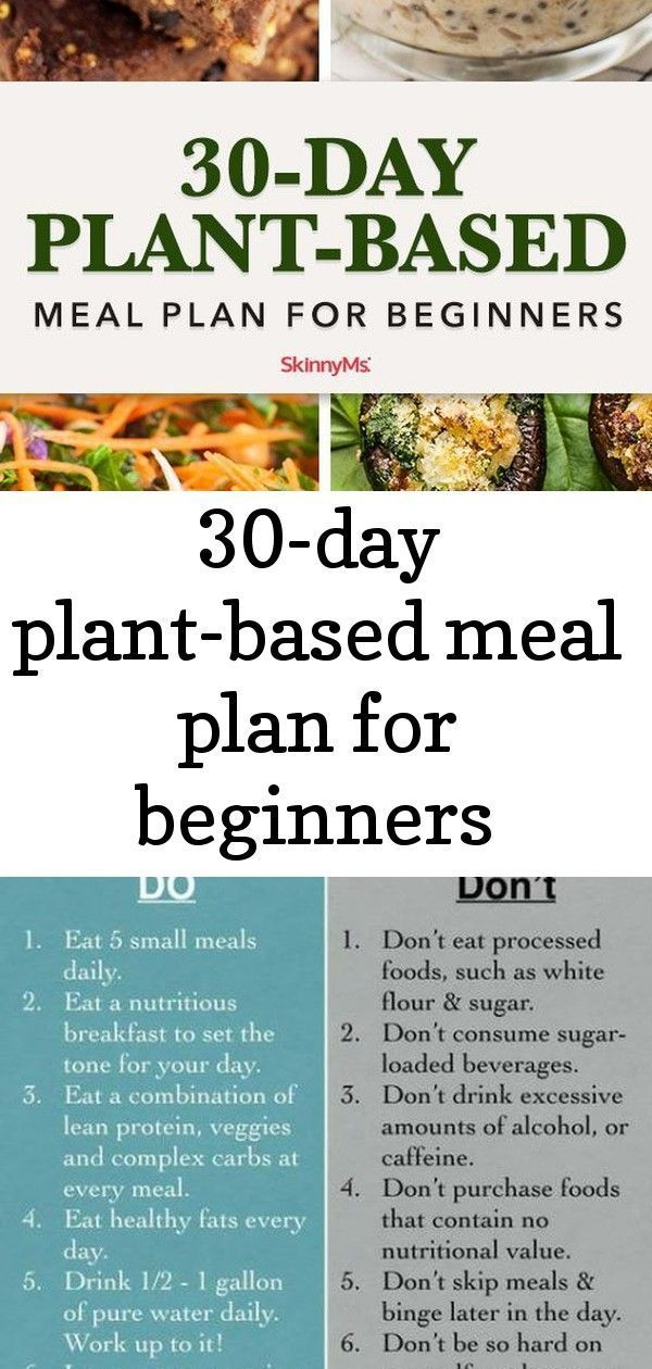 diet for a small plant