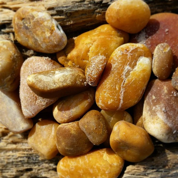 Having a little obsession with this color lately.  Imagine that!  #rocks #stones #beach #orient #butterscotch #caramel #tumbledbythesea #saltwater #nature #northfork #longisland #beachcomber