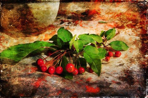 Fall Decor by Randi Grace Nilsberg on ARTwanted