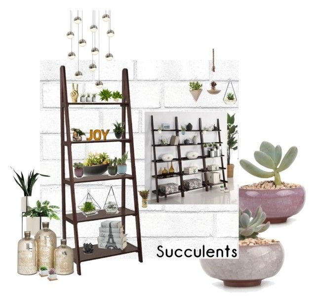 Succulents by airrazor23 on Polyvore featuring polyvore interior interiors interior design home home decor interior decorating Sonneman Home Decorators Collection Tempaper National Tree Company Umbra John-Richard McCoy Design Allstate Floral Danya B plants planters