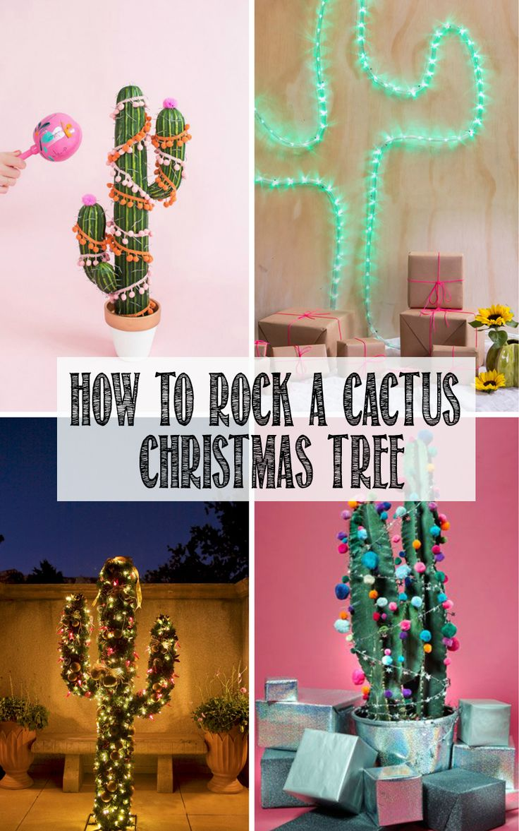 For a non traditional Christmas that's bang on trend, try a cactus for your next Christmas tree! Click through for ideas how to rock it!
