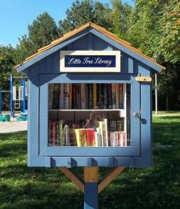 Recap: Little Free Library Launch