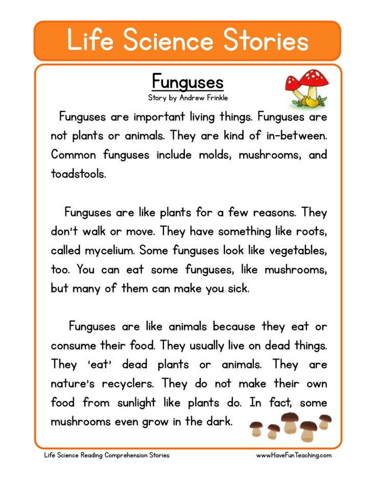 Main Idea Worksheet 1st Grade  Best Educational Resources Images On Pinterest  Fourth Grade  Subtracting Like Fractions Worksheets with Free Printable Safety Worksheets Excel Comprehensionworksheets Provides Reading Comprehension Worksheets For  Teachers Parents And Kids These Reading Comprehension Worksheets Will  Help Your  Bee Anatomy Worksheet Word