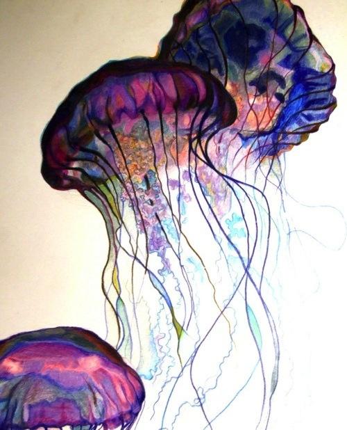 Jelly Fish, Aquarelle