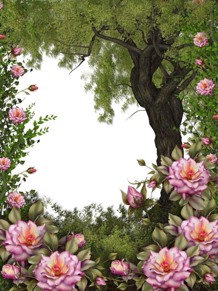 Nature BG by collect-and-creat on DeviantArt