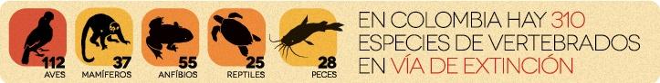 Especies amenazadas