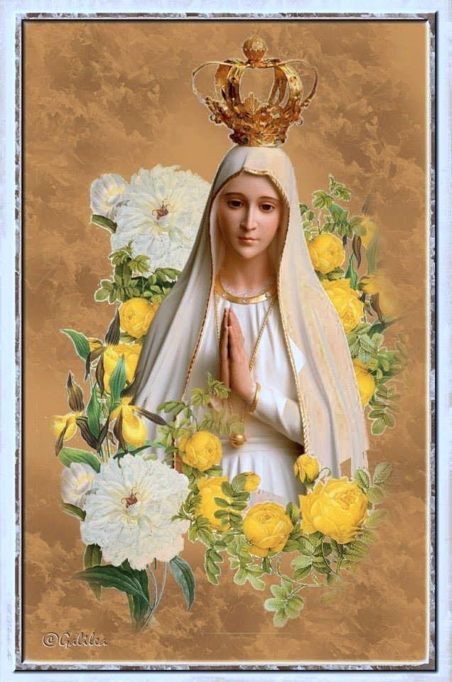 Virgen De Fatima En 2020 Con Imagenes Virgen Maria Virgen