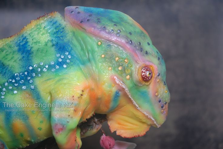 Chameleon cake by The Cake Engineer NZ
