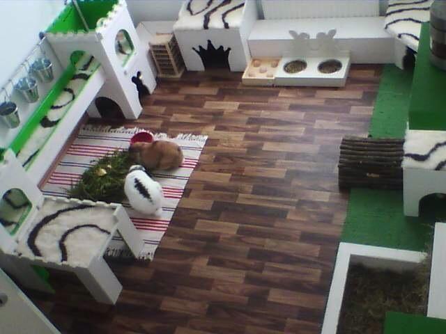 1000 ideas about kaninchengehege auf pinterest indoor for Kaninchenstall einrichten