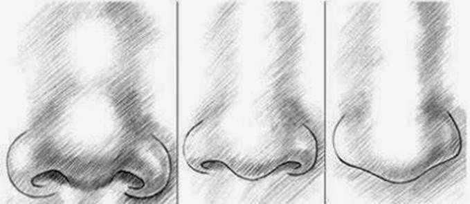 paso 2 para dibujar una nariz de hombre