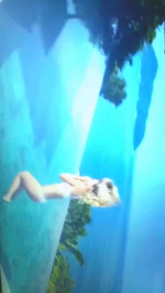 Bonnes Vacances ❤️💋❤️🇨🇭#vacances #mer #amitié #bonnesvacances #bisous #ocean ♬  mzlleella - son original