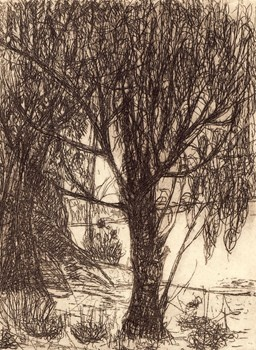 Almond and Thyme - Kareen Anchen Etching 2011 $90.00 Available at www.cascadeprintroom.com.au