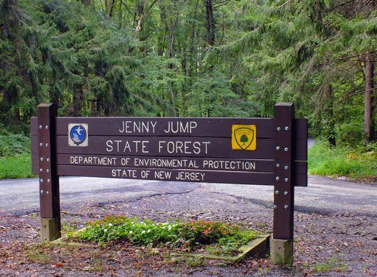 Jenny Jump State Forest   Frelinghuysen, NJ