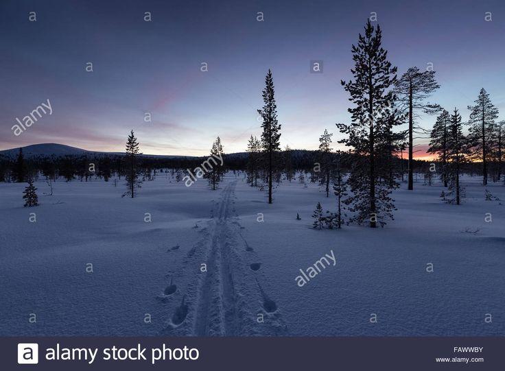 Ukho Kekkonen Natural Park  https://www.google.be/search?client=firefox-b&dcr=0&tbm=isch&q=urho+kekkonen+lapland&spell=1&sa=X&ved=0ahUKEwjFp9KcmrHXAhWSCewKHamZAHcQvwUIIygA&biw=983&bih=599&dpr=1.5#imgrc=GM4zJJKT6gNSeM: