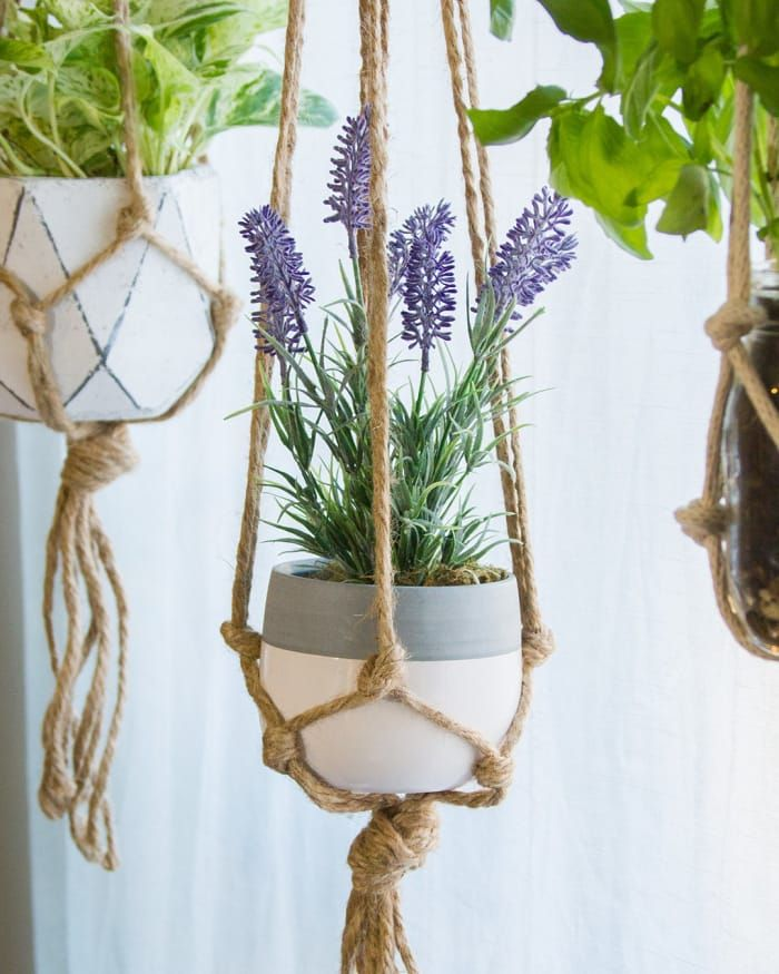 Want Plants In Your Home But Don T Know Where To Put Them These Diy Macrame Plant Hangers Are The Perfect Solution Macrame Plantenhangers